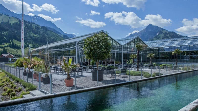 A jungle in the heart of Switzerland: Tropenhaus